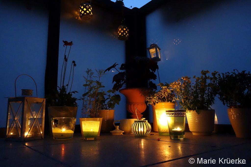 Glühwürmchen-Abend