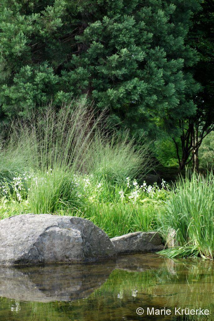 Japanischer Garten 2