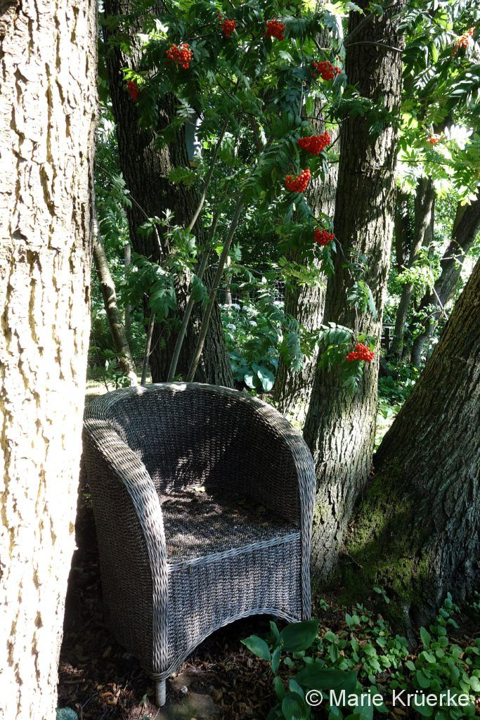 Rattanstuhl im Garten