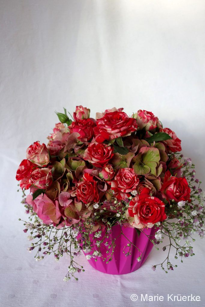 Rose + Hortensie